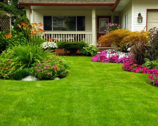 lawn and garden maintenance services
